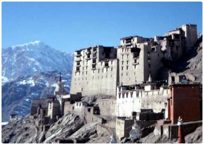 ladakh tour and travel company